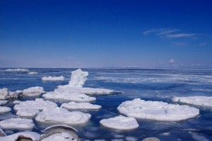 5_drift ice (2)